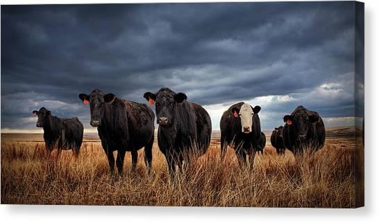North Dakota Canvas Print - Rugged by Thomas Zimmerman