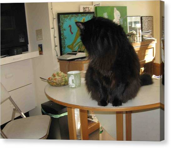 Rumbles Looks At Lunch Canvas Print