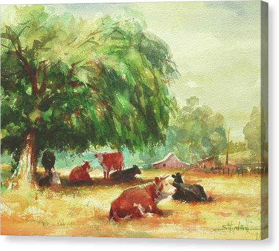 Farm Animals Canvas Print - Rumination by Steve Henderson