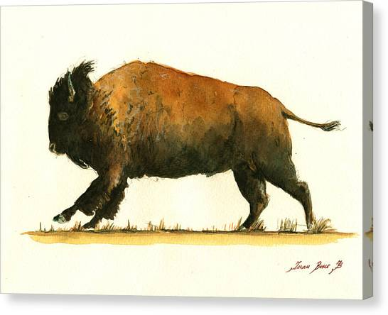 Buffalo Canvas Print - Running American Buffalo by Juan  Bosco