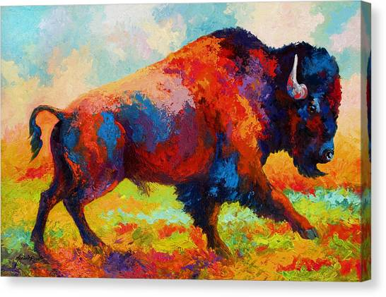 Bison Canvas Print - Running Free by Marion Rose