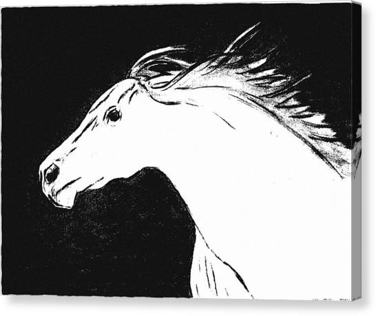 Running Horse Canvas Print by Philip Smeeton