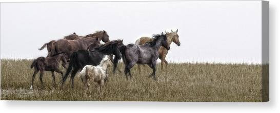 Running On November's Wind Canvas Print