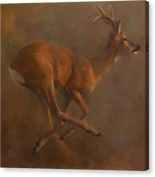 Running Roe Canvas Print