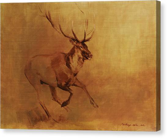 Running Stag Canvas Print
