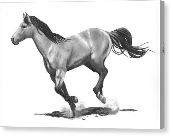 Running Stallion Canvas Print by Joyce Geleynse