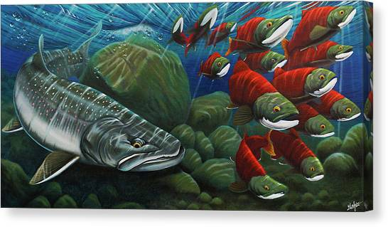 Salmon Canvas Print - Running The Gauntlet by Nick Laferriere