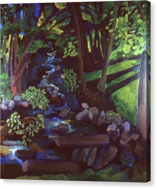 Runoff Stream Canvas Print by Doris  Lane Grey
