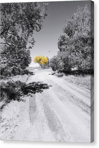 Rural Autumn Splash Canvas Print