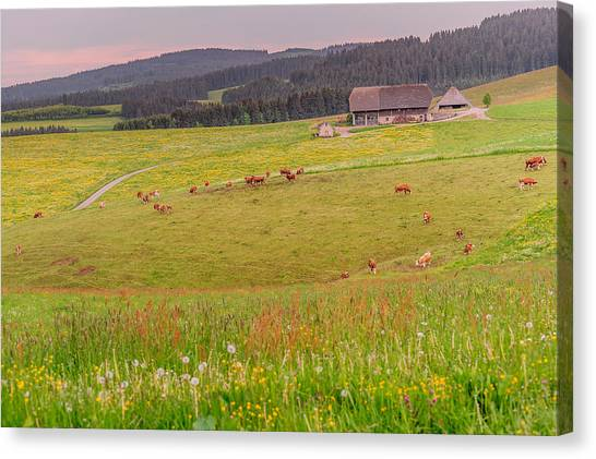 Rural Black Forest Landscape Canvas Print