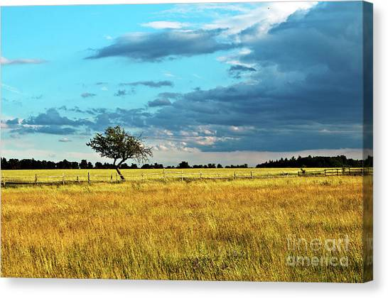 Rural Idyll Poetry Canvas Print