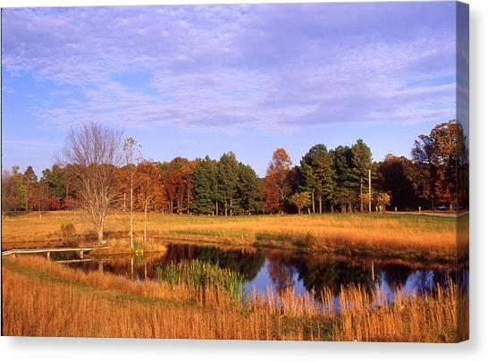 Rural Pond - 1 Canvas Print by Randy Muir