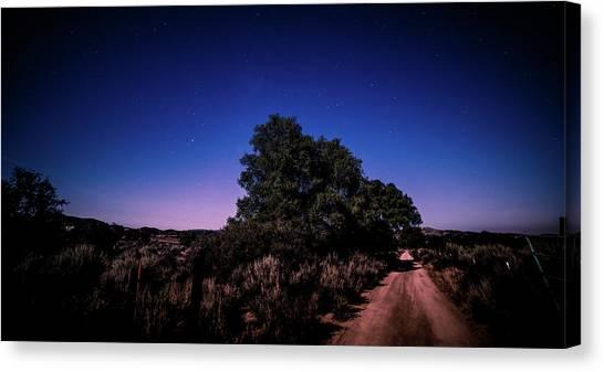 Rural Starlit Road Canvas Print
