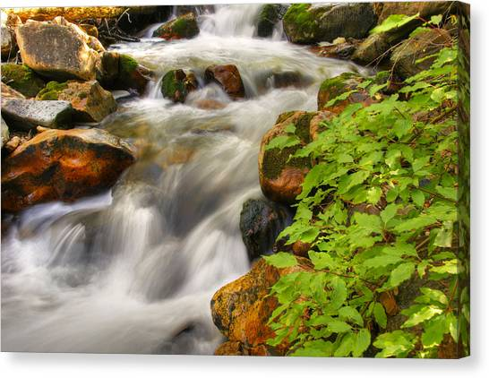 Rushing Water 3 Canvas Print by Douglas Pulsipher
