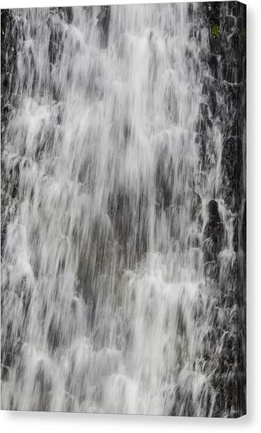 Table Mountain Canvas Print - Rushing Waterfall by Garry Gay