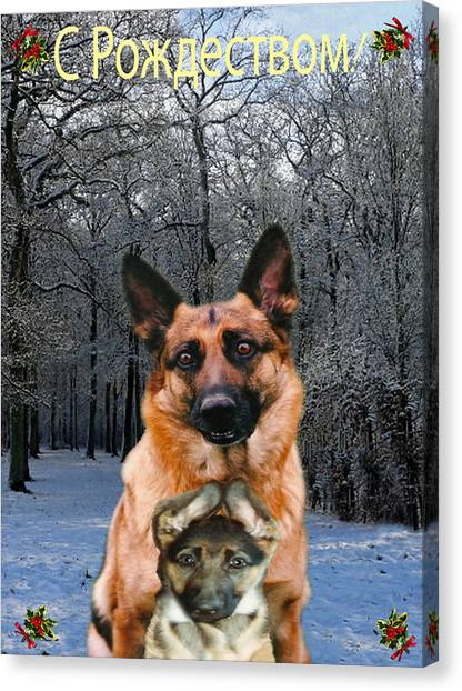 Russian Holiday German Shepherd And Puppy Canvas Print