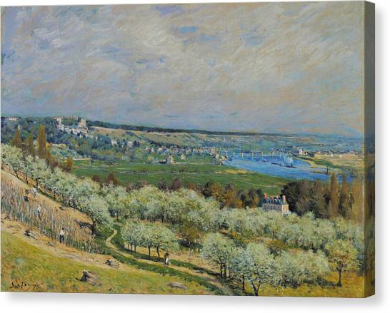 Mountain View Canvas Print - Rustic 16 Sisley by David Bridburg
