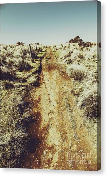 Dirt Road Canvas Print - Rustic Country Trails by Jorgo Photography - Wall Art Gallery