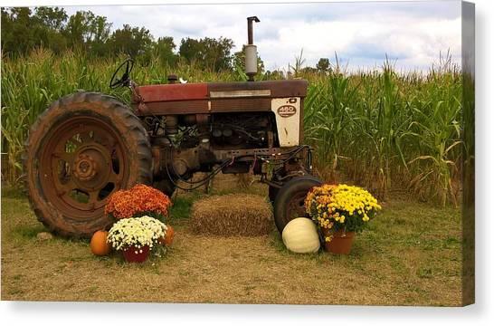 Corn Maze Canvas Print - Rustic Farming 2 by Zully Bartley