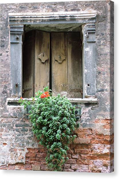 Rustic Wooden Window Shutters Canvas Print