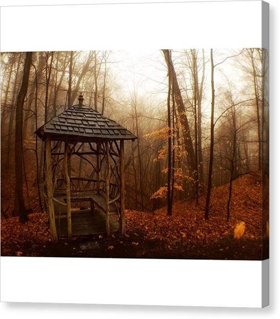 Foggy Forests Canvas Print - Rustic Woodland Gondola  #gondola by Blake Butler