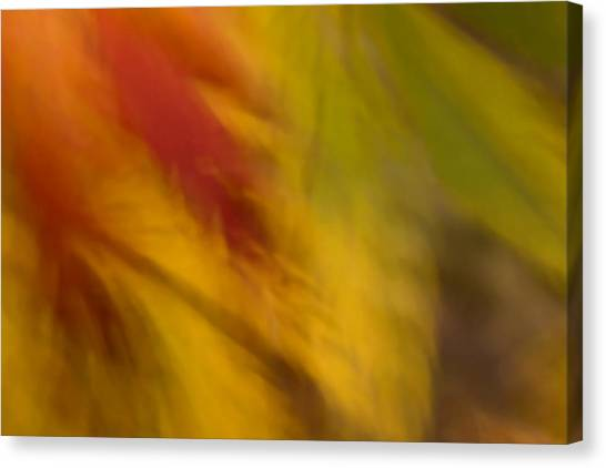 Rustling Leaves Canvas Print
