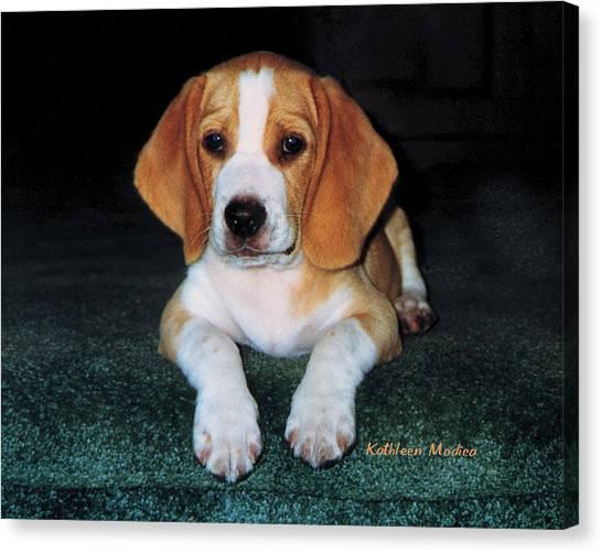 Rusty Puppy Canvas Print