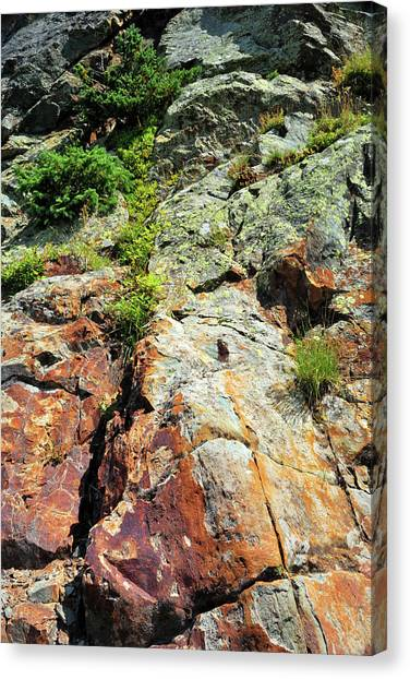 Rusty Rock Face Canvas Print