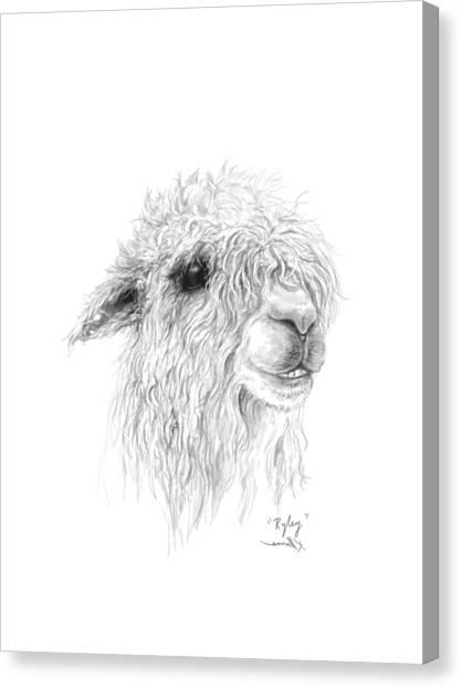 Canvas Print - Ryley by K Llamas
