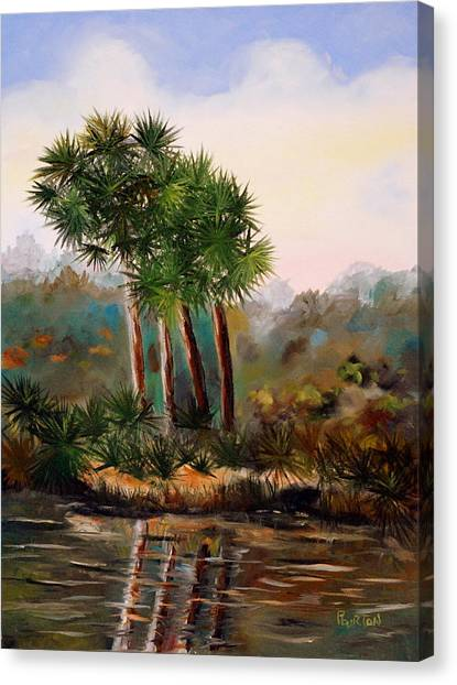 Sabal Palmettos Canvas Print