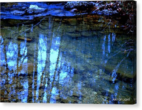 Sacred Water Life Canvas Print