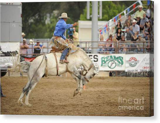 Saddle Bronc Canvas Print by Dennis Hammer