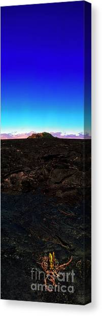 Saddle Road Humuula Lava Field Big Island Hawaii  Canvas Print
