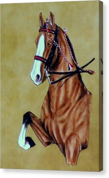 Saddlebred Canvas Print by Lilly King