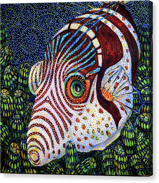 Dreamtime Saddled Puffer Canvas Print