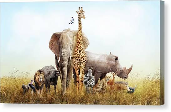 Storks Canvas Print - Safari Animals In Africa Composite by Susan Schmitz