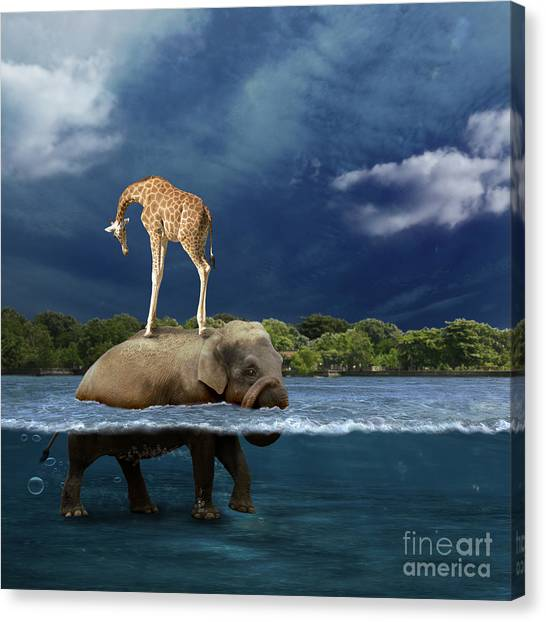 Surreal Canvas Print - Safe by Martine Roch
