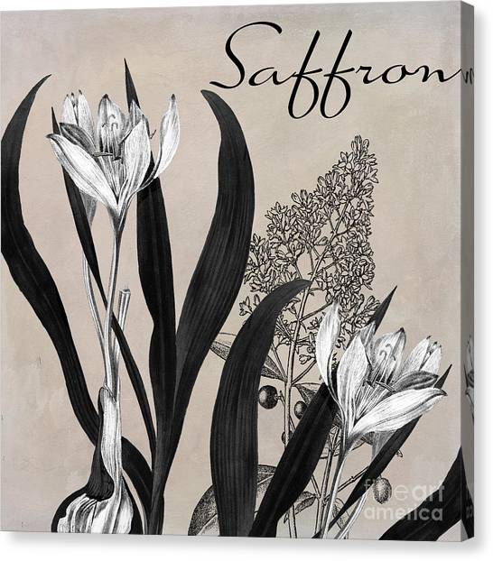 Dinner Table Canvas Print - Saffron Flowering Herb by Mindy Sommers