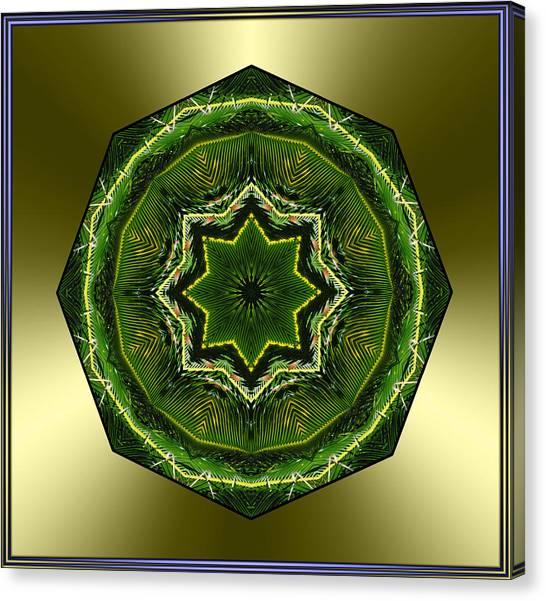 Sago Palm Star Canvas Print