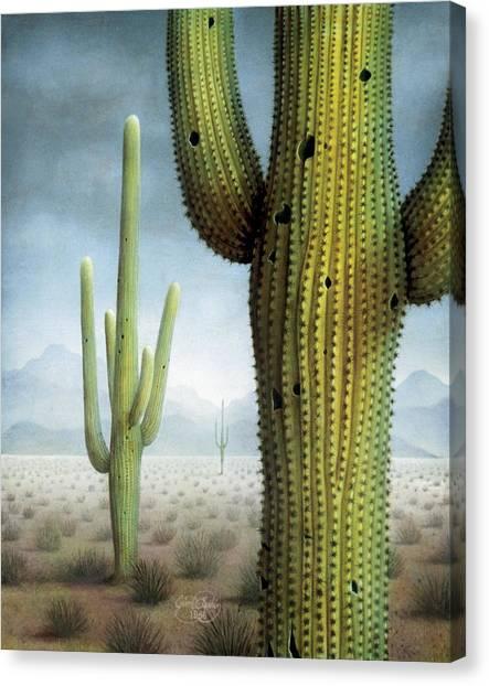 Saguaro Cactus Landscape Canvas Print