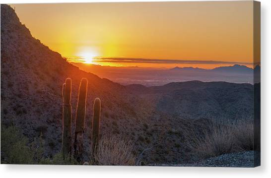 Saguaro Sunrise Canvas Print