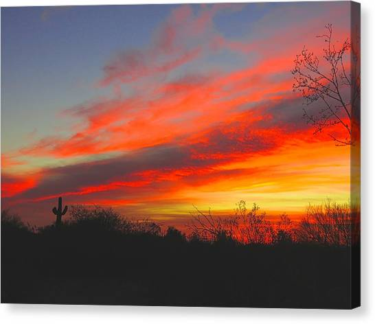 Saguaro Winter Sunrise Canvas Print
