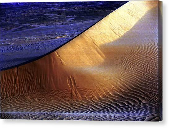 Saharan Desert Canvas Print by Paco Feria