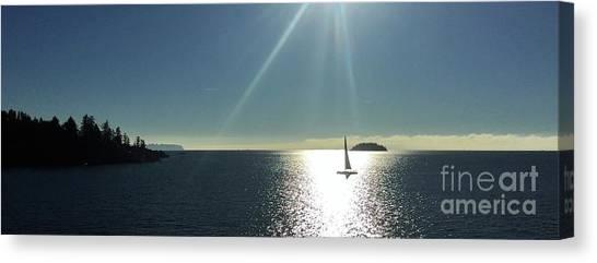 Sail Free Canvas Print