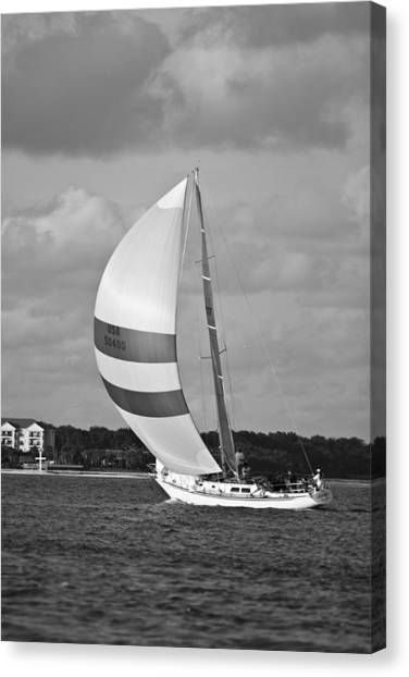 Sailing Race Canvas Print - Sail Power by Dustin K Ryan