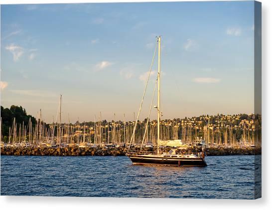 Sailboat Marina Canvas Print by Tom Dowd