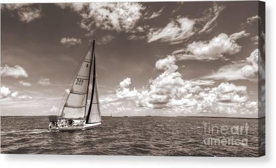 Black 7 White Canvas Print - Sailboat Sailing On The Charleston Harbor Sepia Beneteau 40.7 by Dustin K Ryan