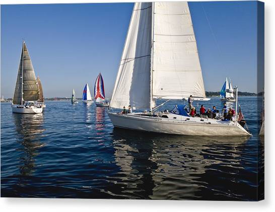 Sailboats Canvas Print by Tom Dowd