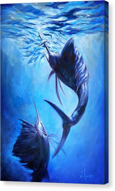 Spearfishing Canvas Print - Sailfish And Ballyhoo by Tom Dauria