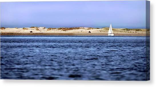 Sailing Blue Canvas Print
